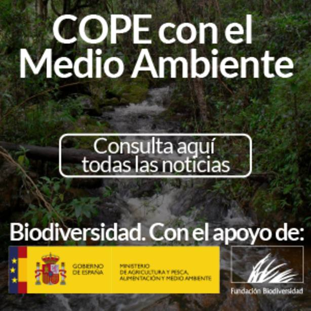 Noticias de Biodiversidad