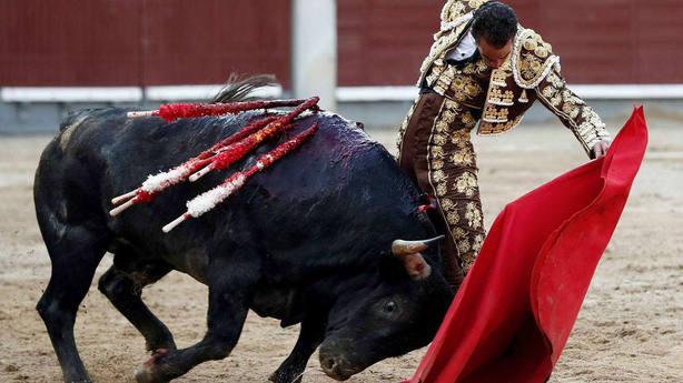 El diestro Pepe Moral en su faena con la muleta durante el trigésimo pimer festejo de la Feria de San Isidro