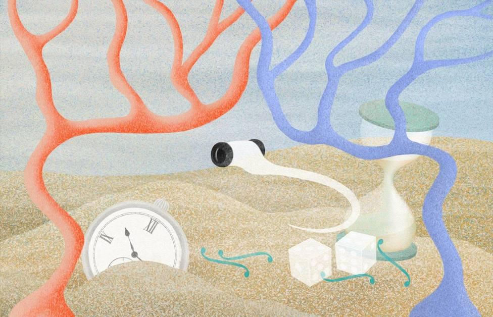 Investigadores siguen el proceso de toma de decisiones a través del cerebro de peces cebra