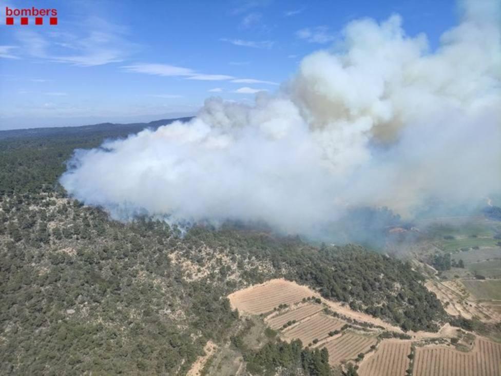 Bomberos luchan contra un incendio forestal descontrolado en Senan (Tarragona)