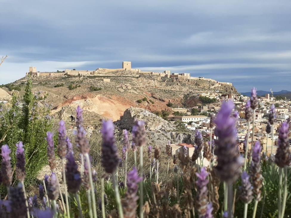El Colegio Abogados y el Foro Casco Histórico se alían para dinamizar la zona monumental