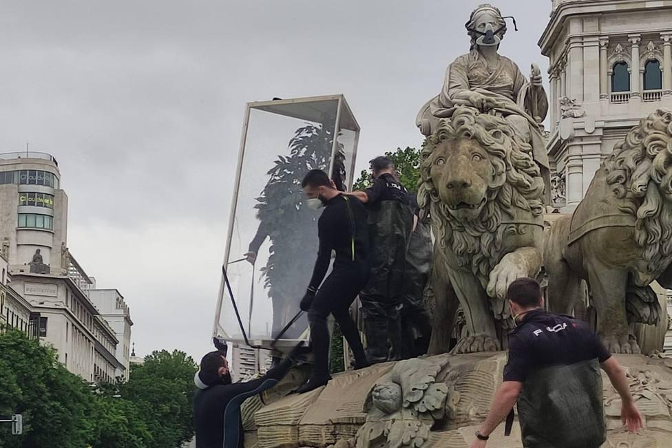 Activistas de Greenpeace subidos a la Cibeles con un árbol