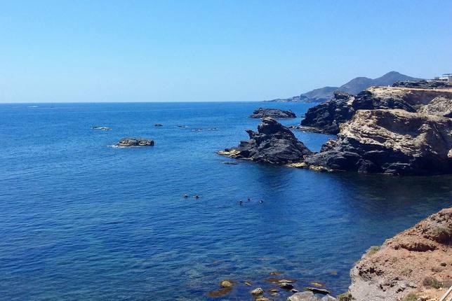 El Instituto de Turismo busca potenciar el turismo de buceo en Suecia