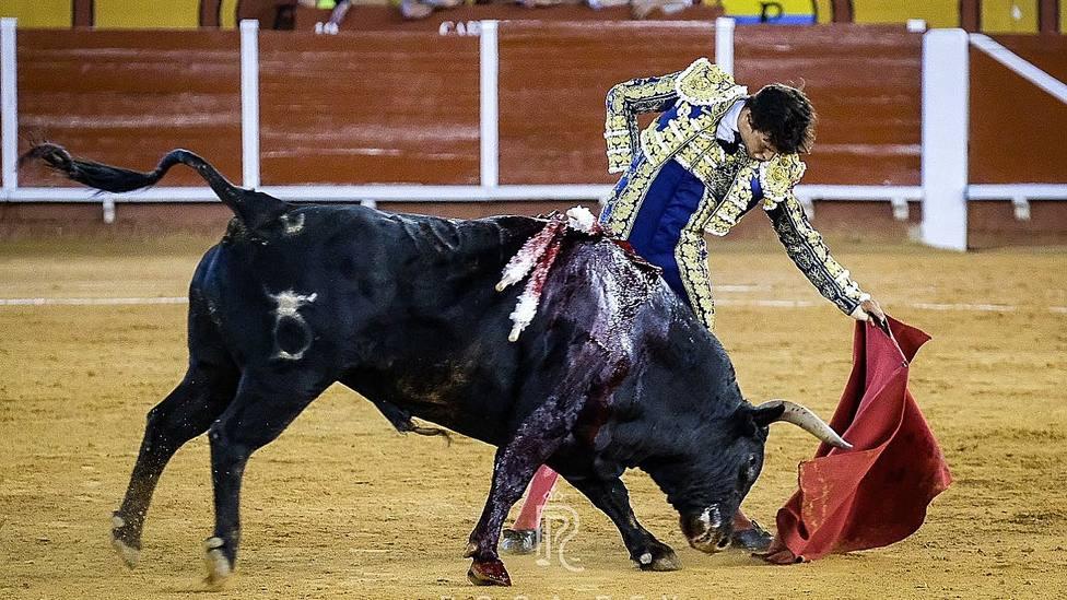 Roca Rey ante Cautivo, el toro de Santiago Domecq indultado en Algeciras