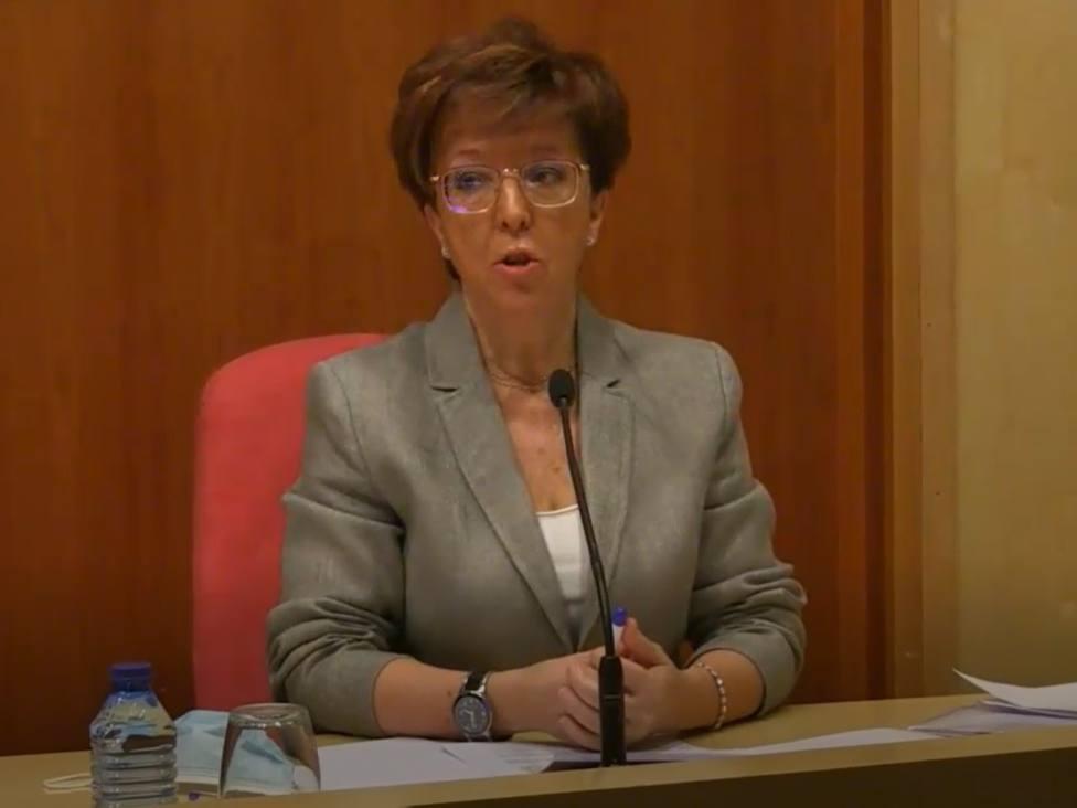 Elena Andradas, directora general de Salud Pública, en la comparecencia este viernes