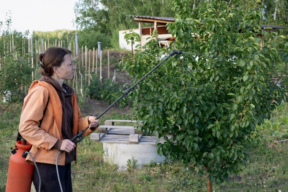 Ortigueira acogerá un curso de manipulador de productos fitosanitarios nivel básico
