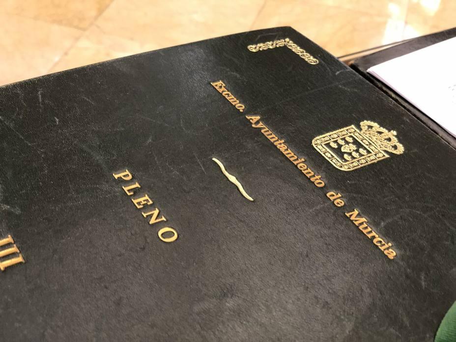Pleno Ayuntamiento de Murcia