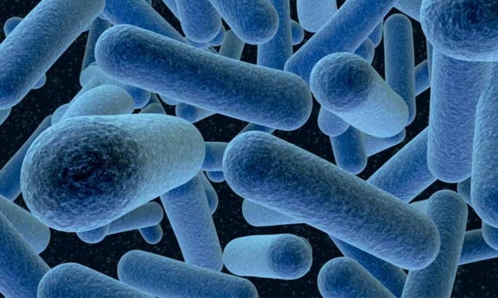 La listeria, una bacteria que ha provocado mucha incertidumbre