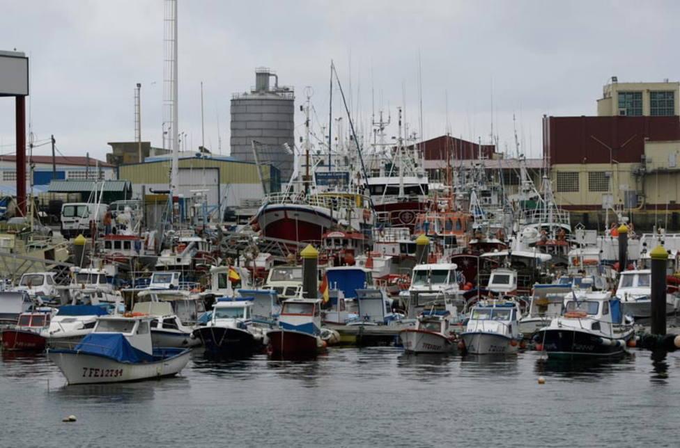 Una empresa noruega proyecta invertir 40M en una planta para producir salmón en Burela