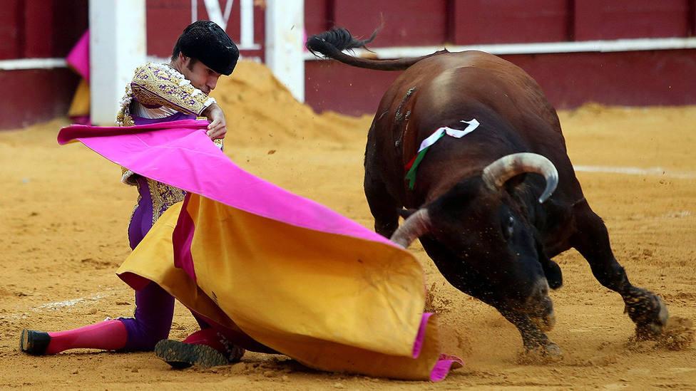 Media verónica de rodillas de Cayetano durante su actuación este sábado en Málaga
