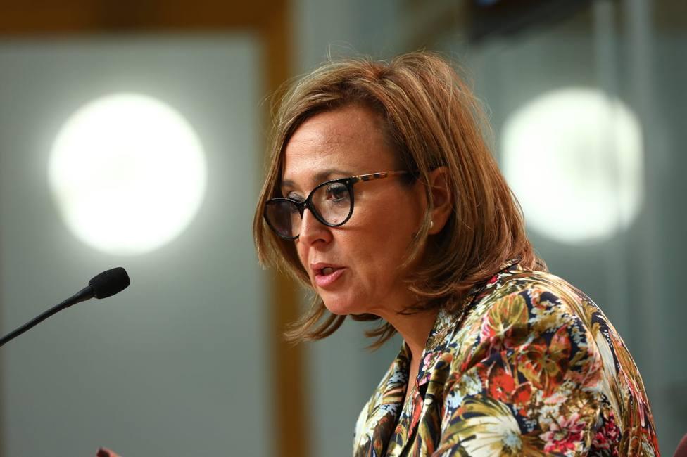 Mayte Pérez Consejo de Gobierno