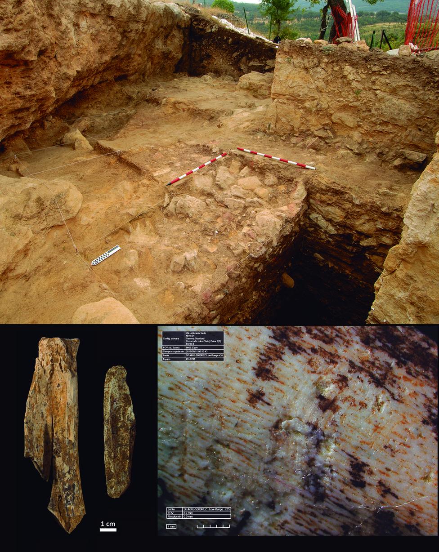 Inteligencia artificial para estudiar el comportamiento de los neandertales