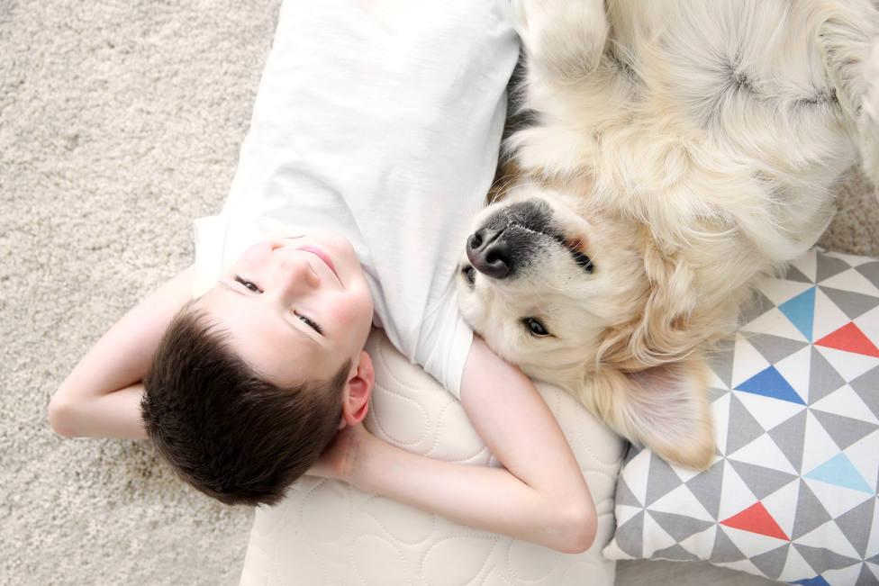 Hay razas de perros que son los mejores para cuidar y proteger a nuestros hijos