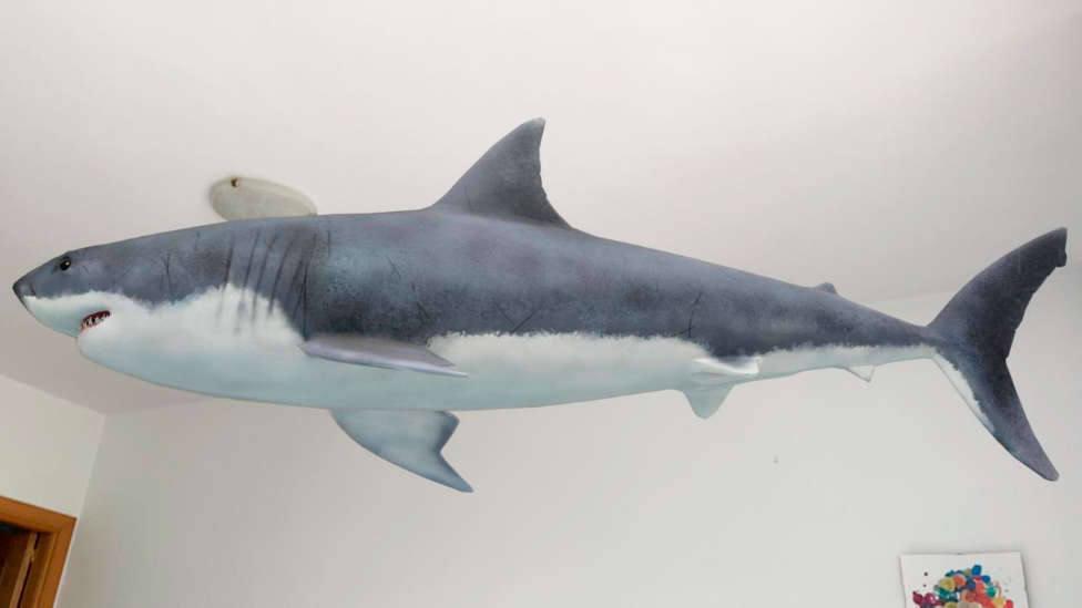 Animales 3D de Google: Cómo hacer que aparezcan en el salón de tu casa