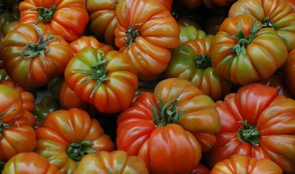 Esta es la parte más sabrosa y desconocida de los tomates Raf de Almería