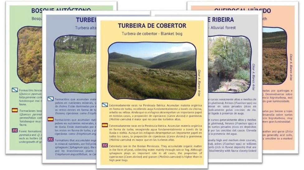 Diseñan un juego de cartas para mostrar la diversidad de la Serra do Xistral