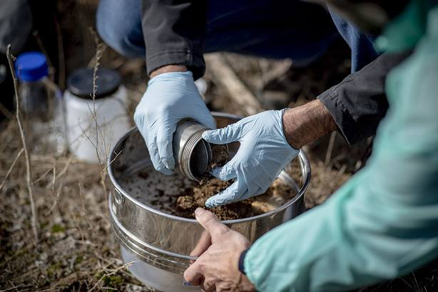 SEO/BirdLife y Ecoembes estudiarán el impacto de la basuraleza en 140 áreas relevantes para aves y biodiversidad