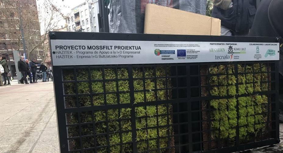 Musgo anticontamienante que se prueba en Vitoria