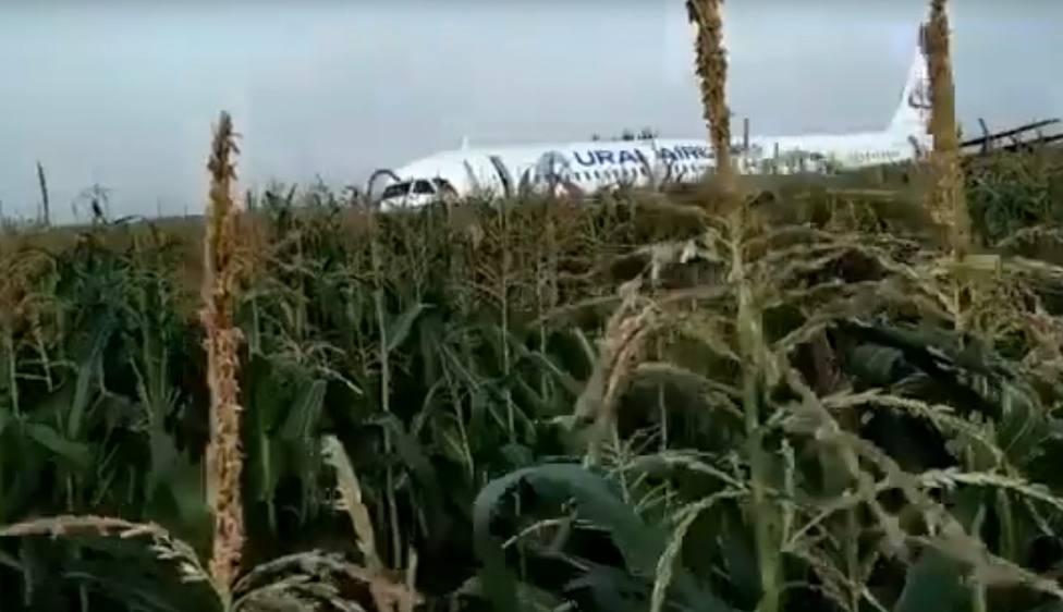 Un Airbus 321 aterriza de panza en un campo de maíz en las afueras de Moscu