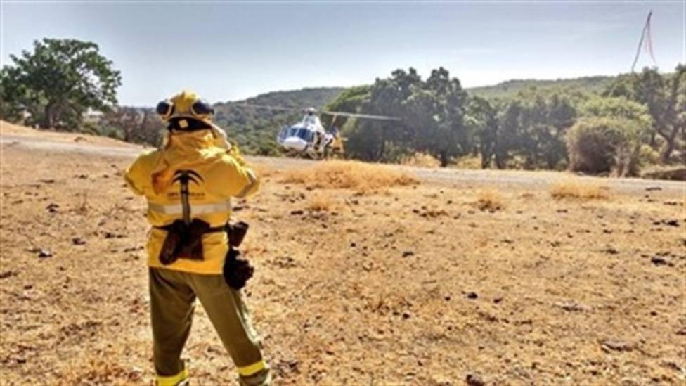 Evacuadas 40 personas por un incendio forestal en El Madroño (Sevilla)
