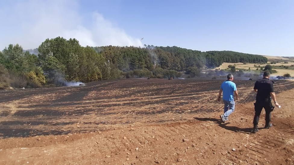 El fuego arrasa 72.668 hectáreas en ocho meses, casi cuatro veces más que hace un año
