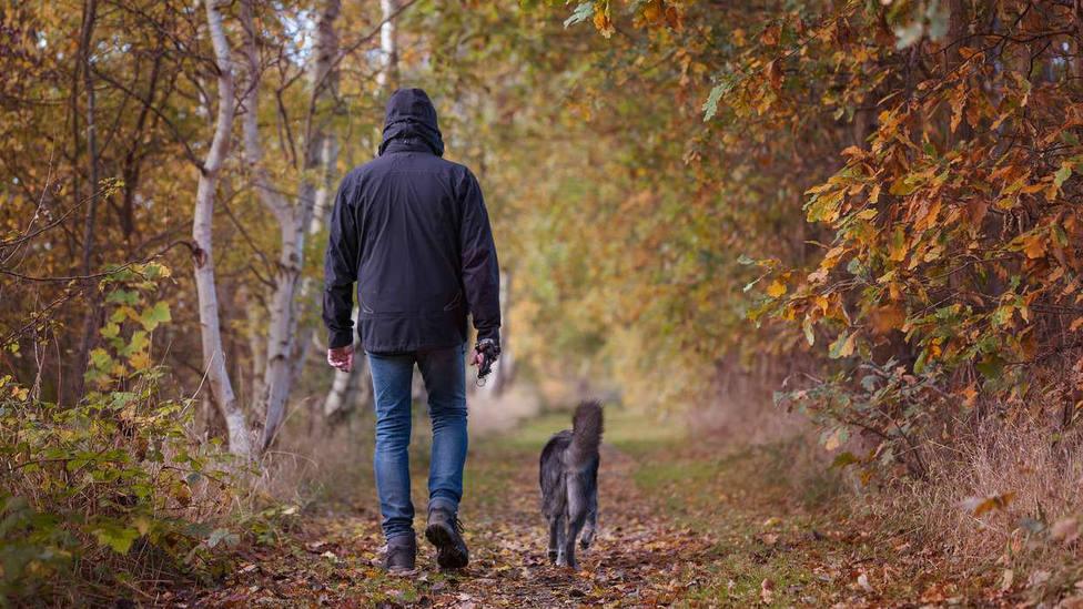 Detenido en Málaga por agredir sexualmente a dos mujeres mientras paseaba a su perro