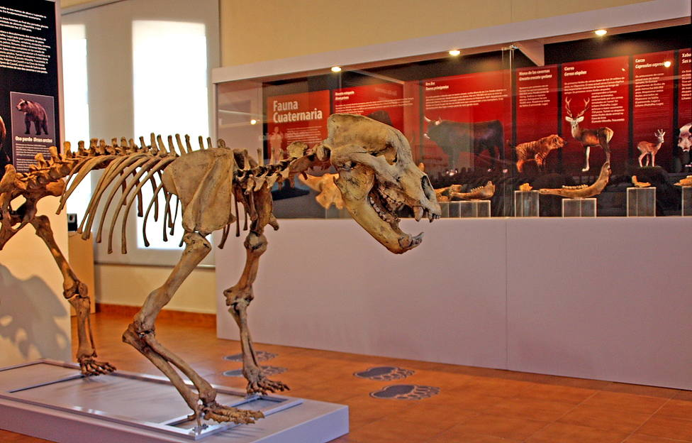 Interior del Museo Geológico de Quiroga