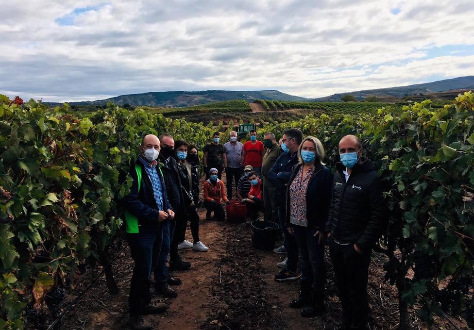 ARAG-ASAJA advierte a Hita de operaciones de compra de uva por debajo de los costes de producción