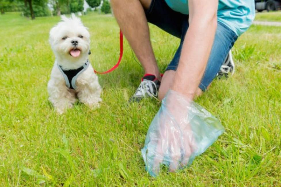 Logroño recomienda que los propietarios de perros limpien con una botella de agua sus excrementos y orines
