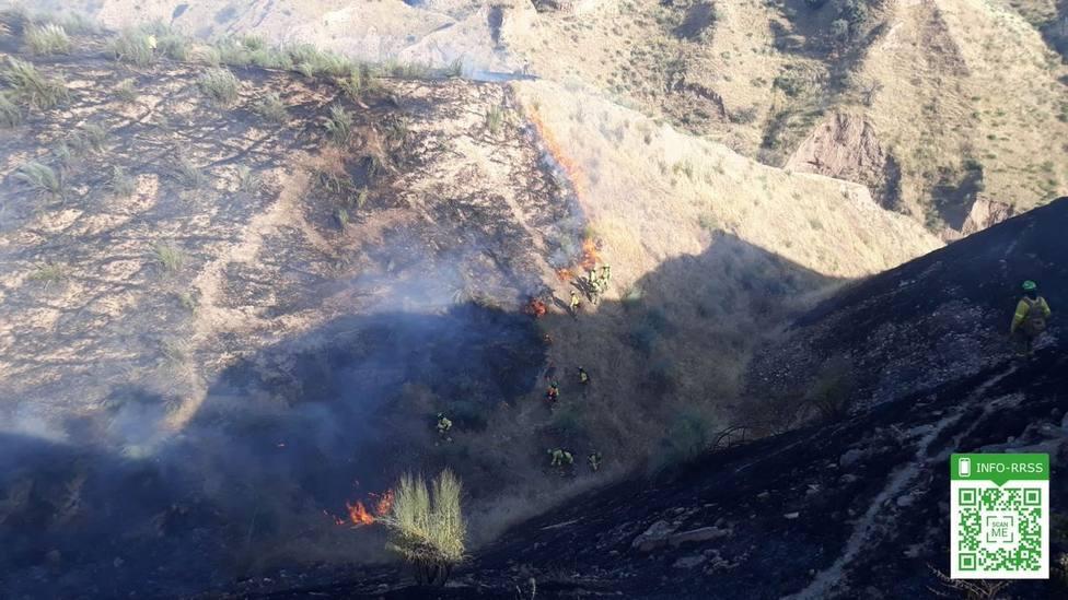 Estabilizado el incendio de Pinos del Valle (Granada), de donde se retiran los medios aéreos
