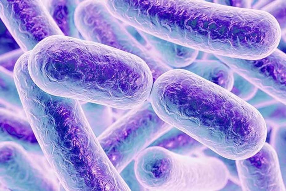 Un mayor conocimiento del microbioma ayudaría en la prevención y tratamiento de alergias y diabetes