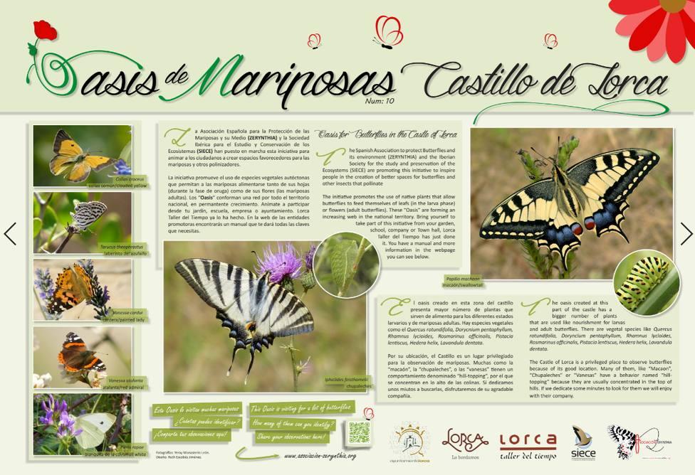 """El Castillo de Lorca entra a formar parte del Proyecto """"Oasis de Mariposas"""""""