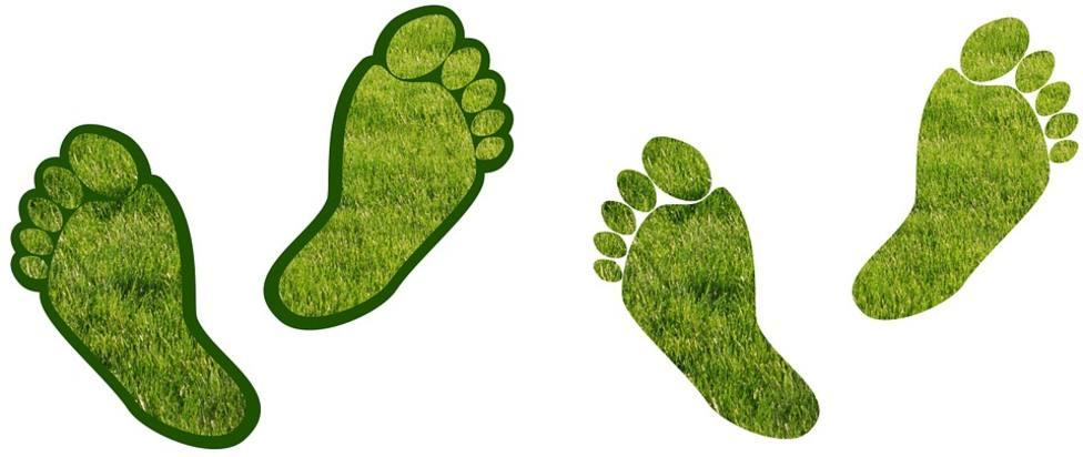 Calcula la huella de carbono que dejas en el planeta