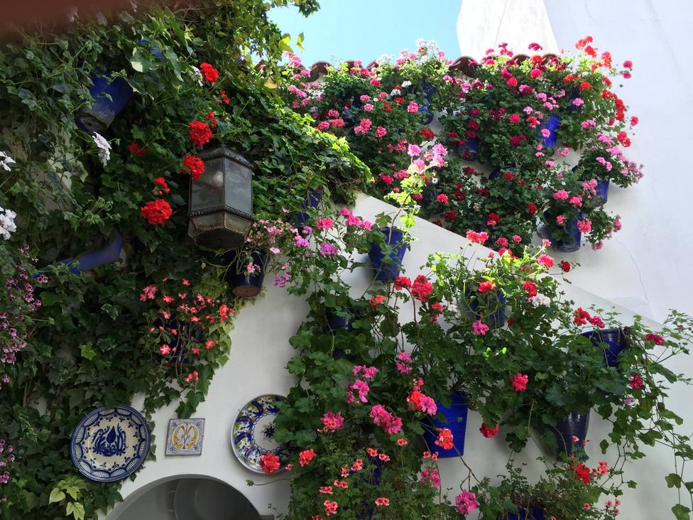Visita los Patios de Córdoba con uno de los hoteles emblemáticos de la ciudad