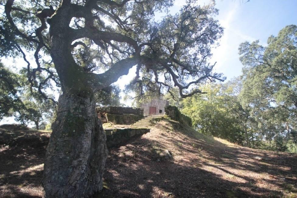 ctv-nur-thumbnail 210408-sobreiras-da-magdalena