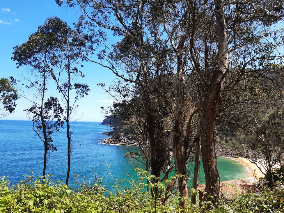 El camino por el monte que va desde la playa de Merón a Careñes nos deja espectaculares vistas