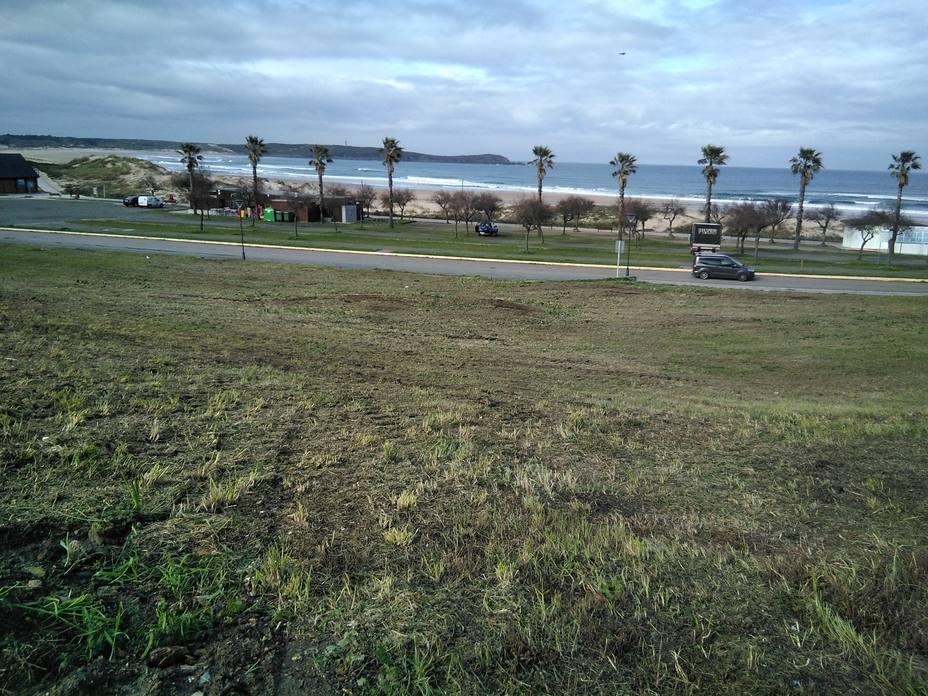 Zona ya desbrozada en las proximidades de la playa de A Frouxeira