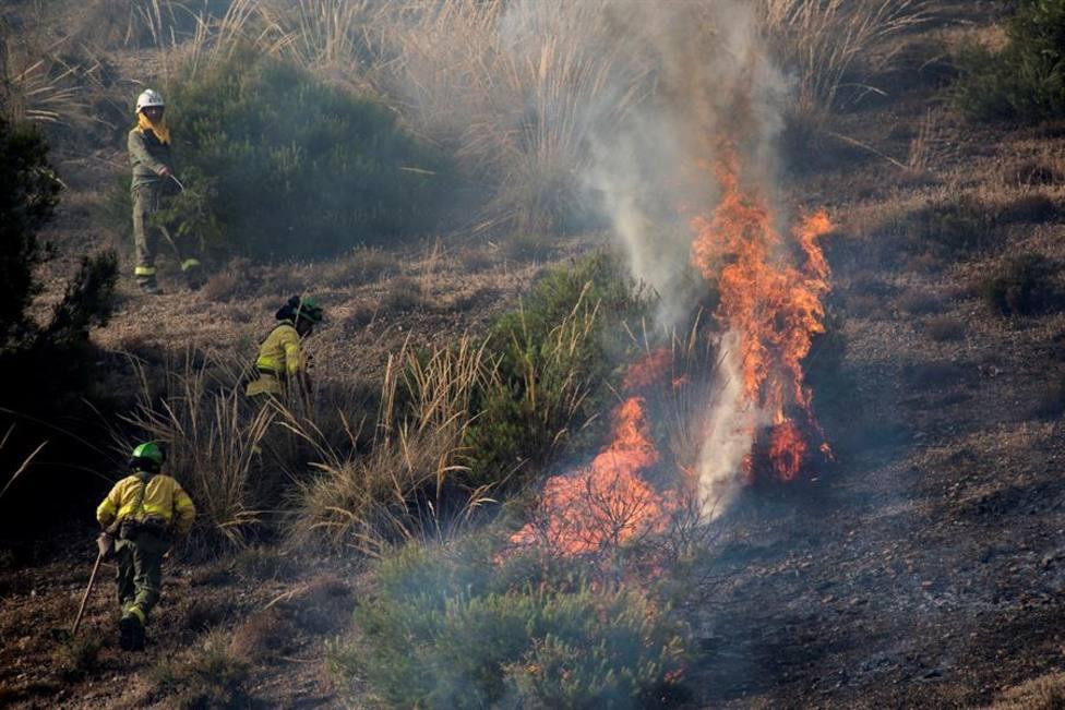 Controlado el incendio forestal declarado en el paraje del Sacromonte de Granada