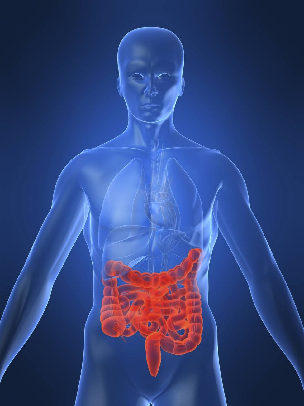 Investigadores identifican un posible objetivo de tratamiento para la enfermedad de Crohn