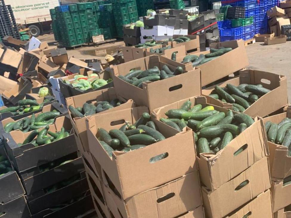 verduras desperdiciada