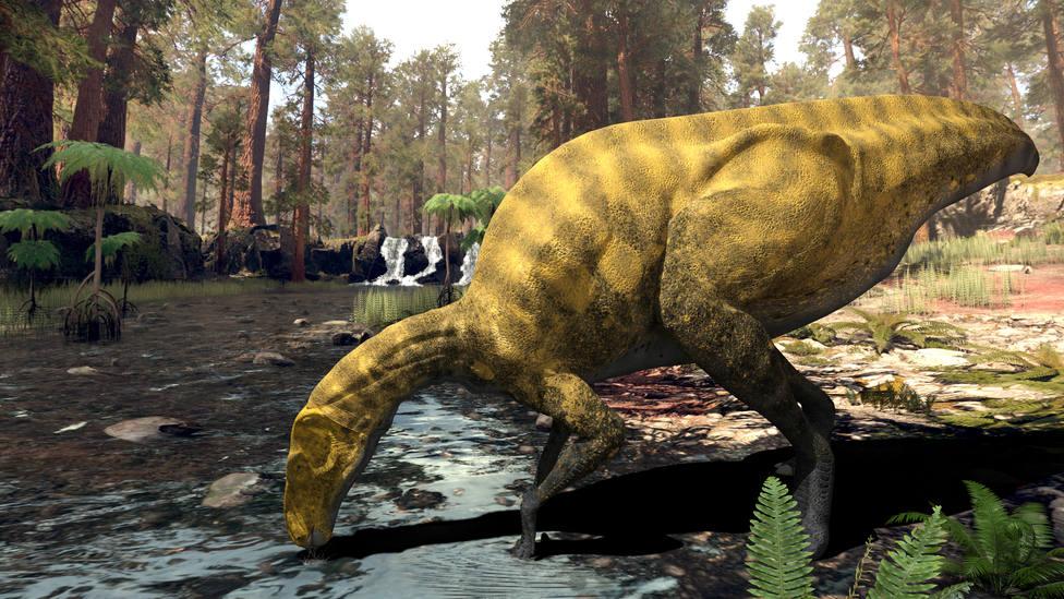 ctv-cen-portellsaurusf-1