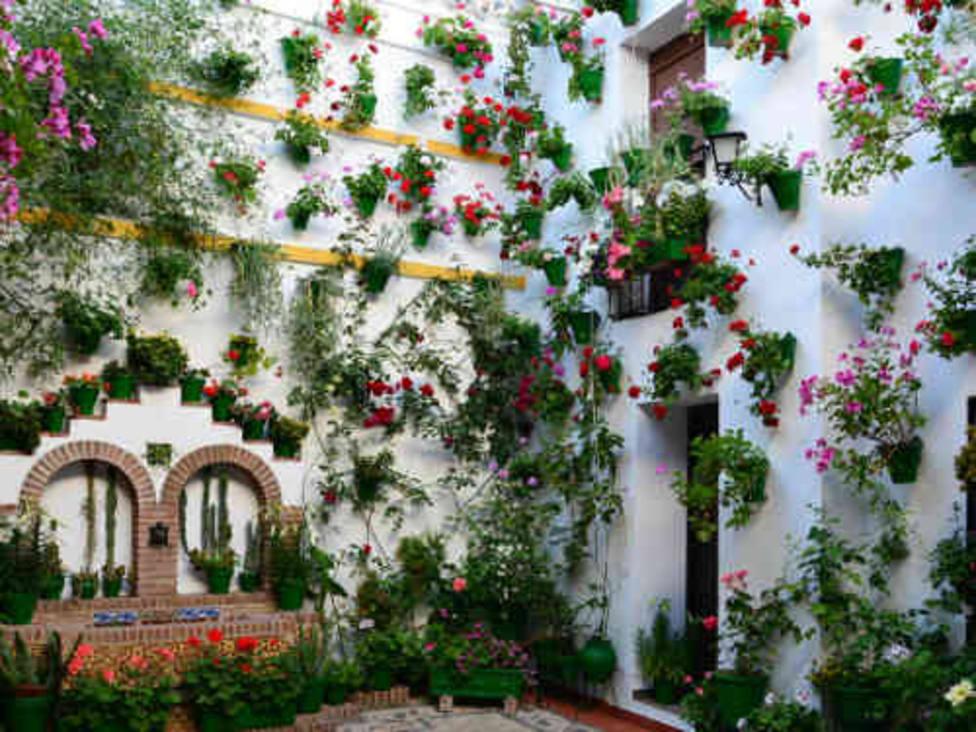 Patios de Córdoba: San Basilio, 22
