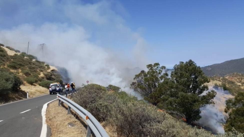 El Cabildo de Gran Canaria prevé estabilizar el incendio de Tejeda en las próximas horas