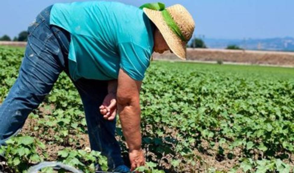Andalucía amplía hasta el 31 de mayo el plazo para presentar solicitudes de la PAC 2021