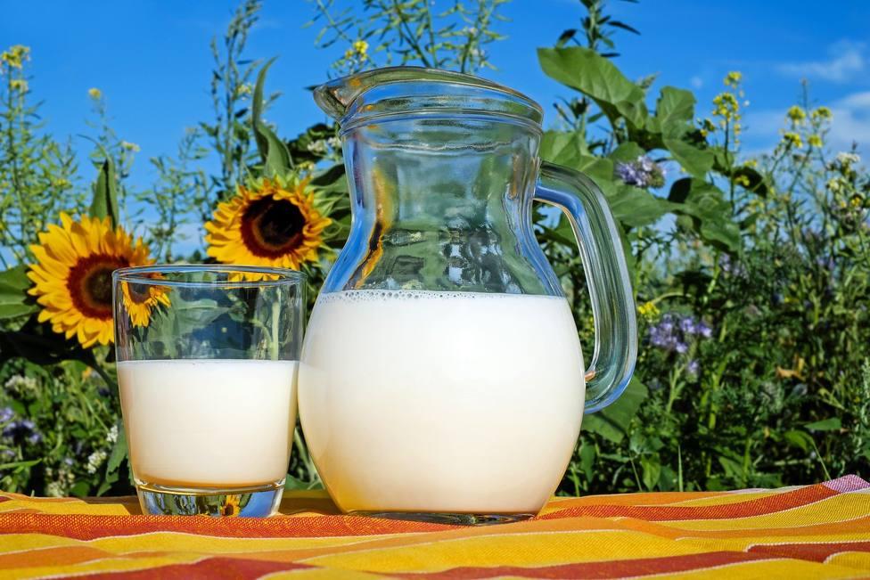 Esto es lo que le pasa a tu cuerpo cuando consumes lácteos a diario