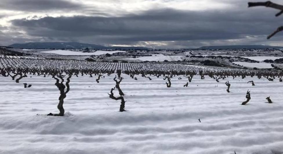 La Rioja vuelve a la normalidad invernal con temperaturas más propias de la época
