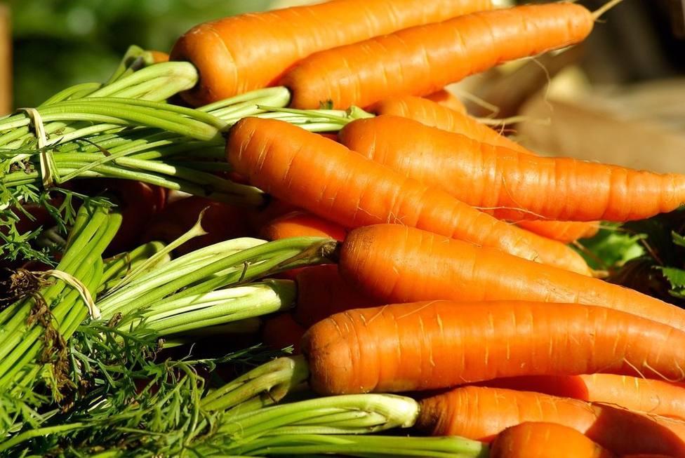 Las zanahorias son un alimento muy nutritivo que podemos tomar en ricos purés, cocidas y hasta crudas