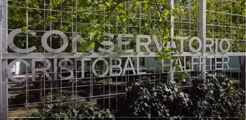 ctv-8vf-conservatorio