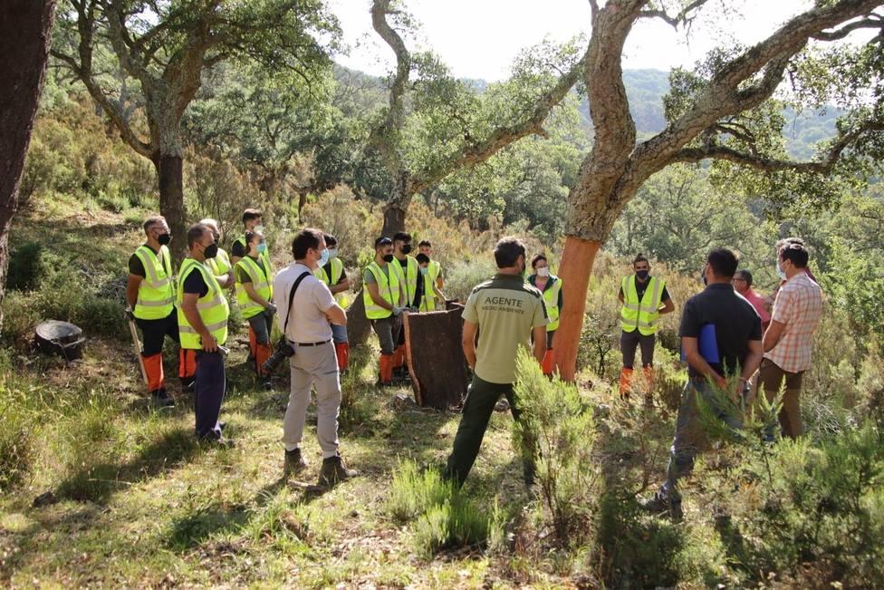Cádiz.- La Junta desarrolla la tercera edición de la Escuela de Corcheros en el Parque Natural Los Alcornocales