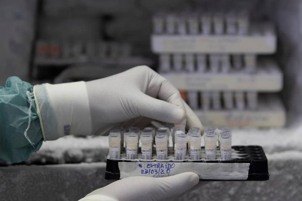 La lucha contra reloj de los laboratorios por conseguir fármacos contra el coronavirus.